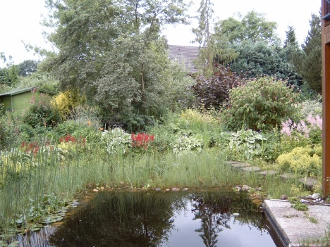 Mittagessen Garten