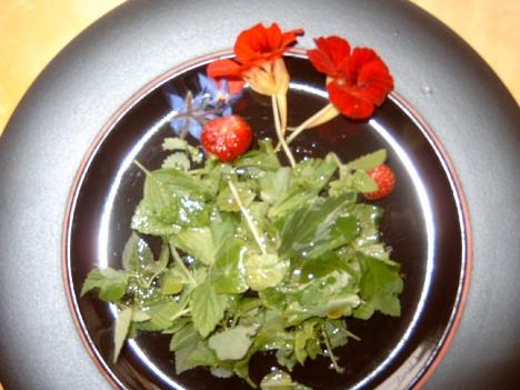 Mittagessen Wildkräutersalat