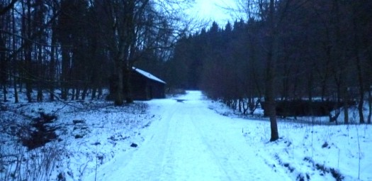 "In Richtung ""Unteres Firnsbachtal"""