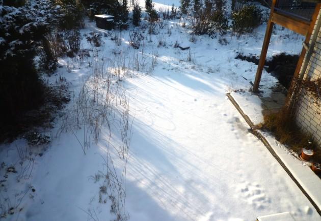 26. Januar - Sonne und - 8°