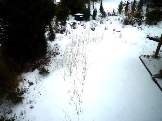 Gartenansicht 11.02.10
