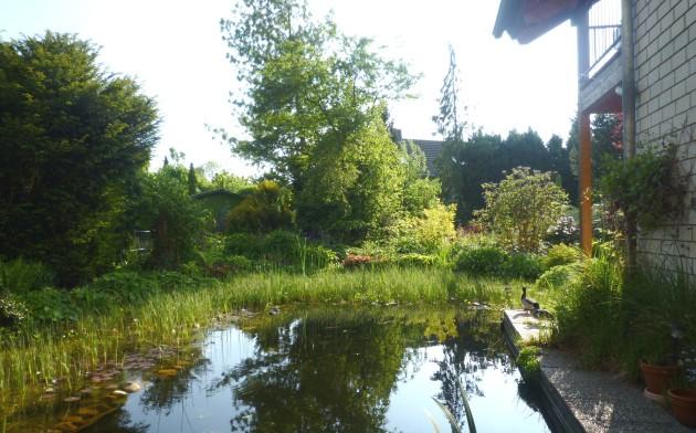 Garten Pfingsten 2010