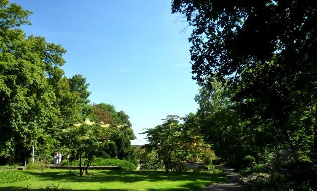 Parklandschaft