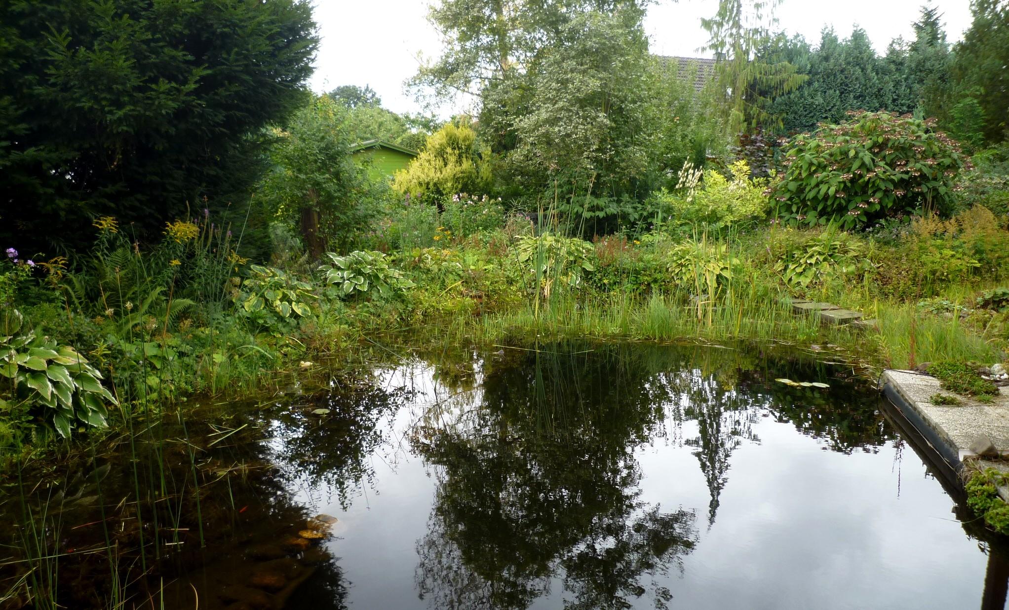 Garten am 09.09.10