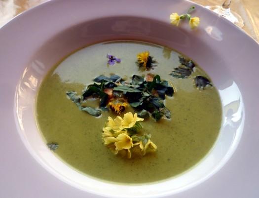 01 Suppe von der Brunnenkresse