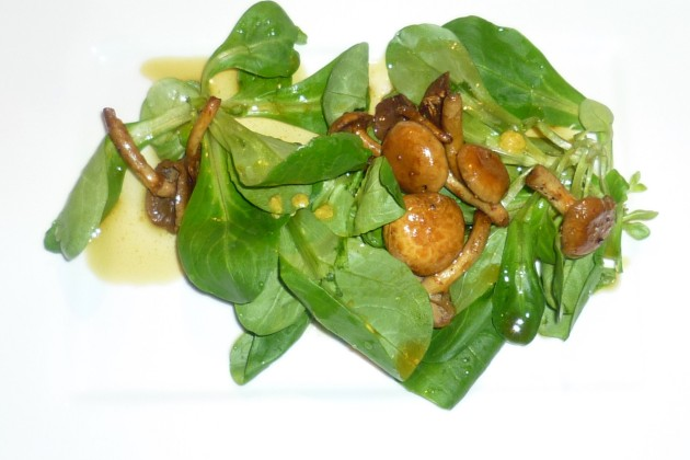 02 Feldsalat mit Goldköpfchen