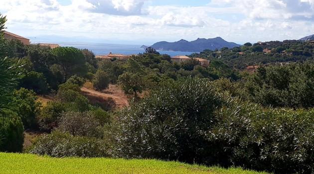 06102018 02 Blick von der Terrasse.jpg